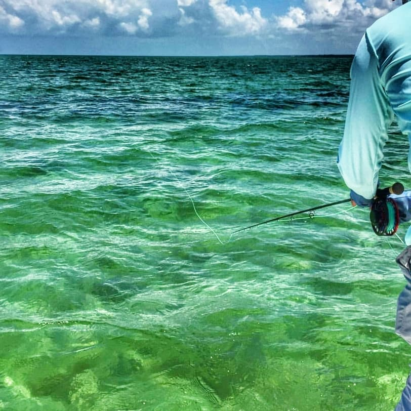 Marathon Key fly fishing big school of tarpon